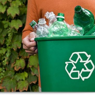 GoodThingsGuy: These are the Recycling Heroes of 2021 Awarded for their Efforts